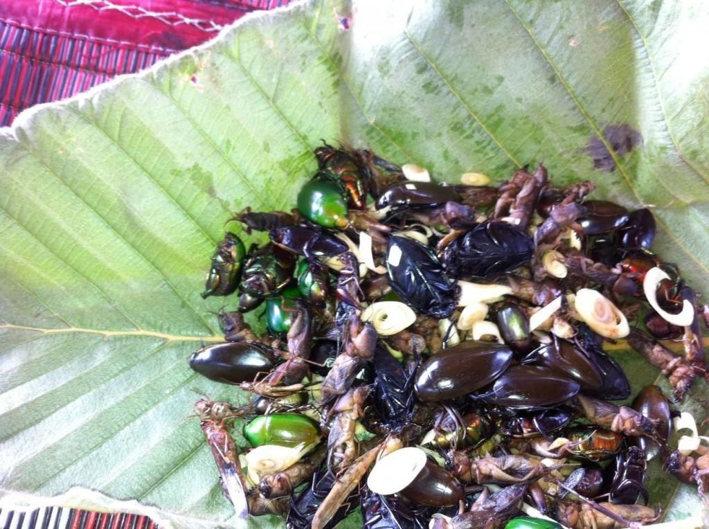 manger des insectes en thailande