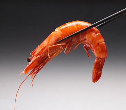 allergie aux crevettes alimentaire