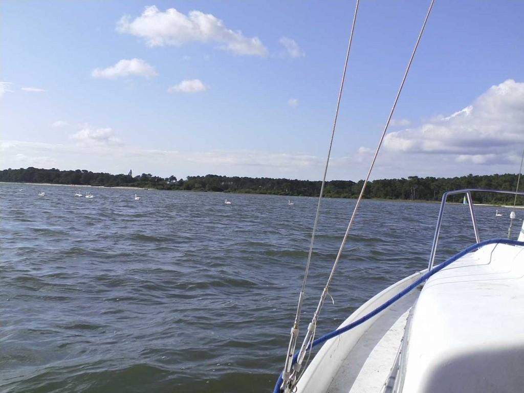 tour en bateau a voile sur le bassin d'arcachon