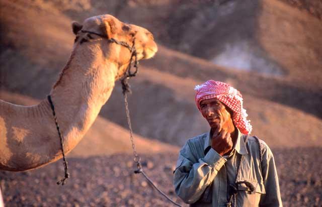 Que faire a Eilat